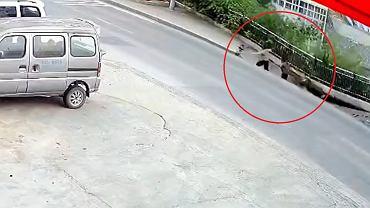 Chiny. Chodnik 'połknął' dwoje przechodniów. Udało się ich uratować