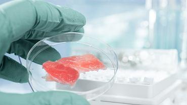 Do grona poszukiwaczy alternatywnych źródeł mięsa dołączyła również amerykańska firma Air Protein, która ogłosiła ostatnio, że udało się jej wyprodukować jego zamiennik z powietrza