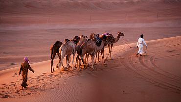 Wahiba Sands - pustynia w Omanie
