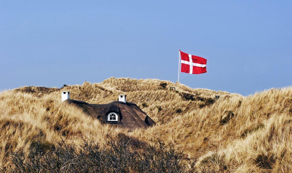 W Danii hodowanie norek na skóry sięga lat trzydziestych XIX wieku.