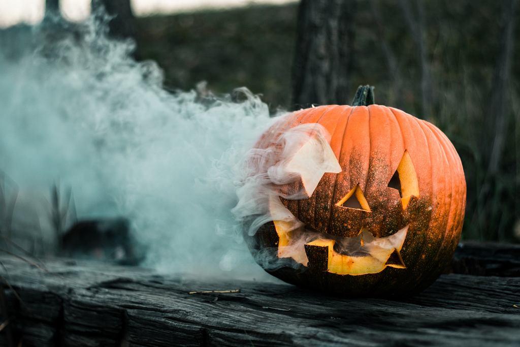 Już wkrótce Halloween. Co to za święto? Kiedy wypada? (zdjęcie ilustracyjne)