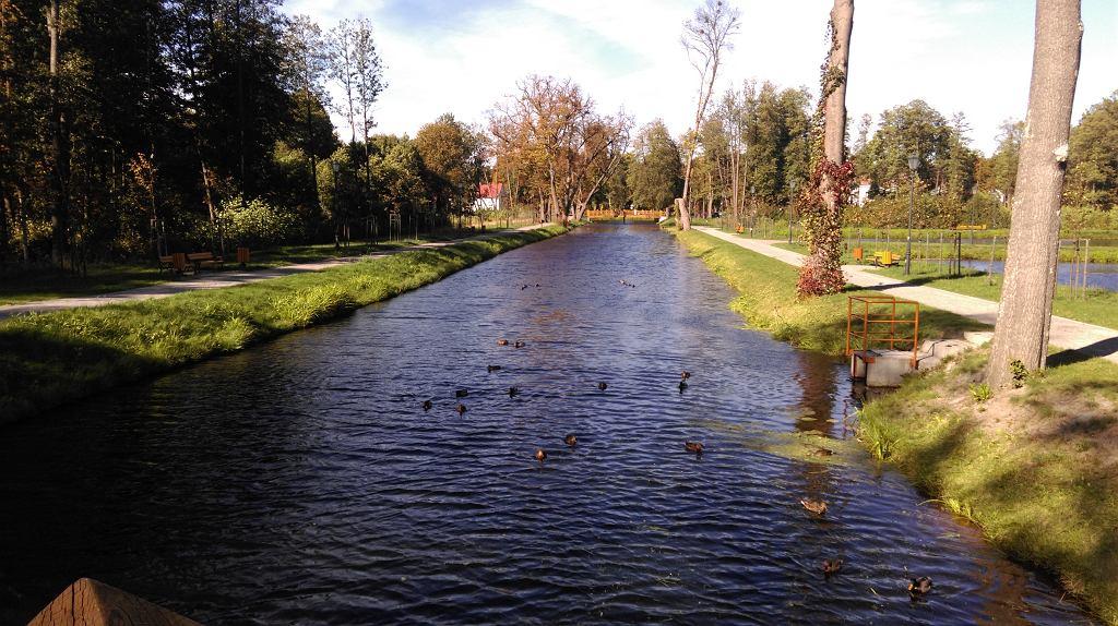 Uroczy park w Zwierzyńcu