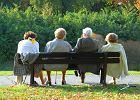 """Nowe """"500+"""" dla emeryta. Rząd chce przed wyborami przyznać dodatki emerytom i rencistom. Wypłata przed świętami"""