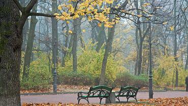 Park Iwana Franki, Lwów / Shutterstock