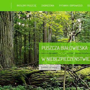 Strona akcji Kocham Puszczę