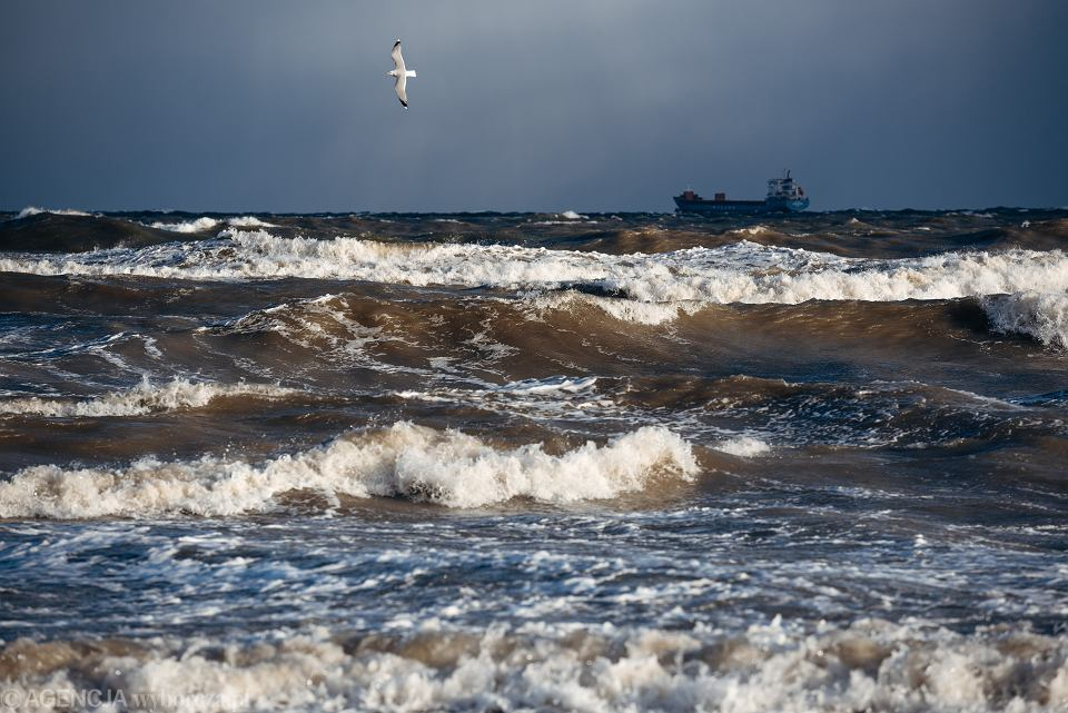 Plaża w Jelitkowie, Gdańsk, styczeń 2019 r.