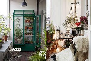 Zimowy ogród na balkonie - wszystko czego potrzebujesz, by go przygotować