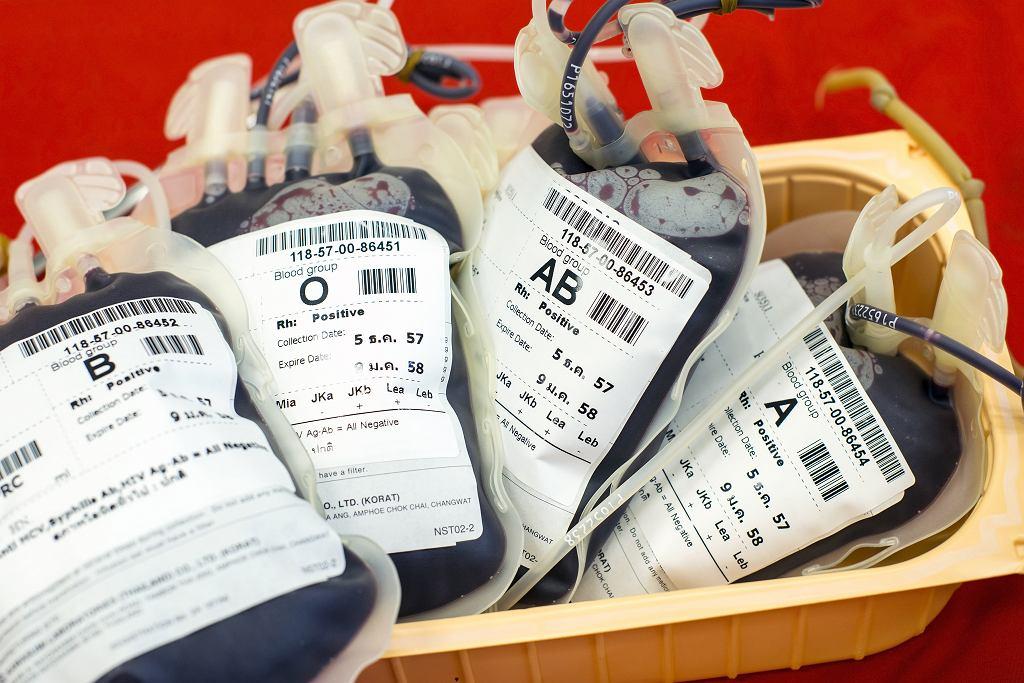 Krew. Zdjęcie ilustracyjne