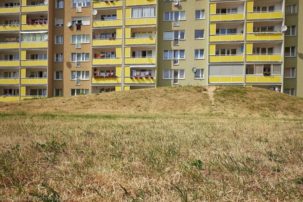 Susza w Polsce - zdjęcie ilustracyjne