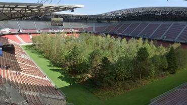 Las na stadionie w Klagenfurcie