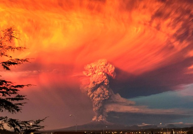 Zdjęcie numer 0 w galerii - Wybuchy wulkanów, japońska wyspa kotów, zwierzęta na ulicach Tblisi. Najpopularniejsze zdjęcia z Instagrama Reutera