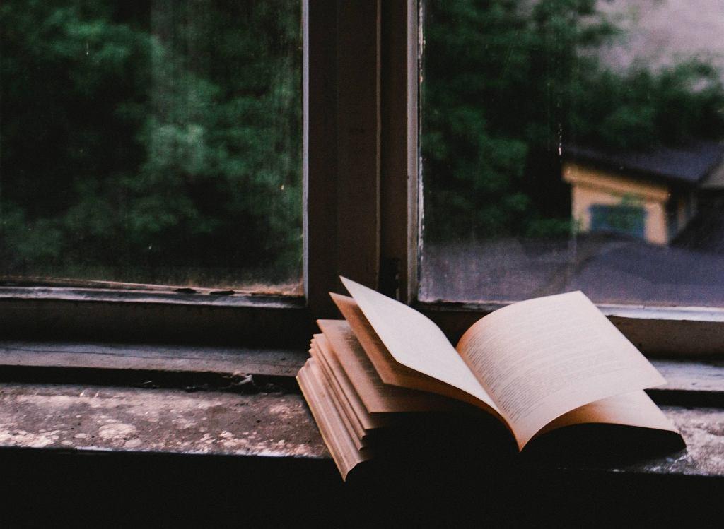 'Sklepy cynamonowe' Brunona Schultza - szczegółowe streszczenie lektury