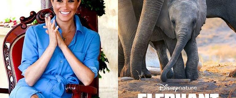 Meghan Markle dubbingowała film Disneya. Jest już oficjalny plakat