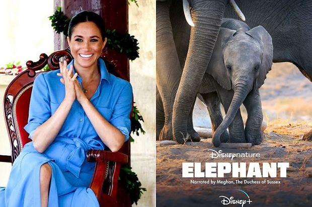 Meghan Markle nie traci czasu. Ostatnio wzięła udział w produkcji dokumentu Disneya, opowiadającym o podróży rodziny słoni. Na Instagramie pojawił się już zwiastun i plakat filmu. Znamy także datę premiery.