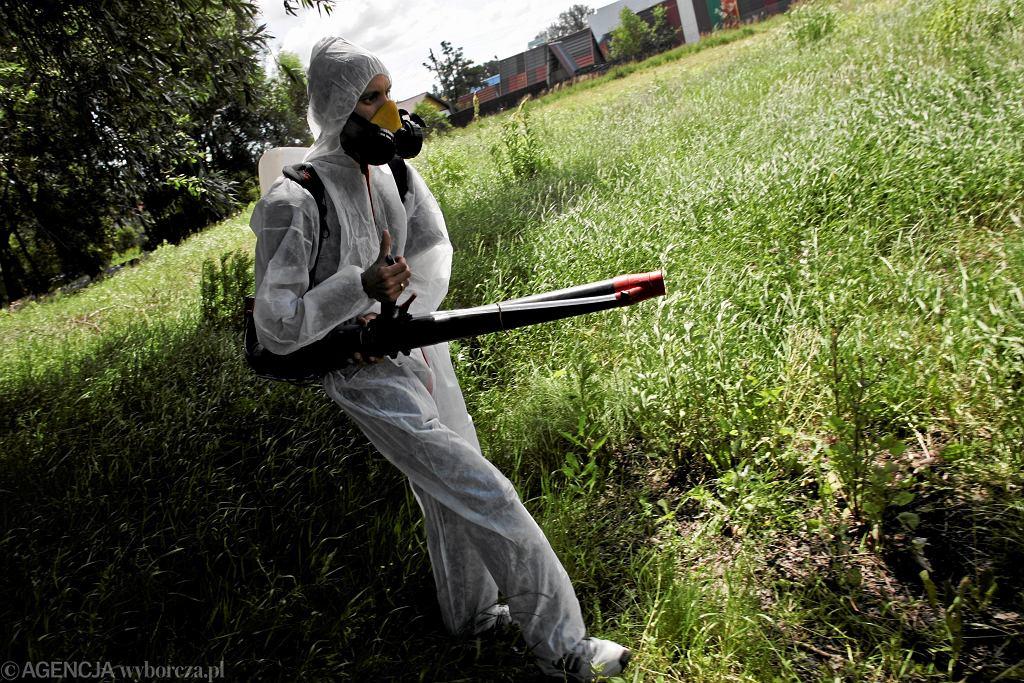 Опрыскивание от комаров было проведено в 2010 году