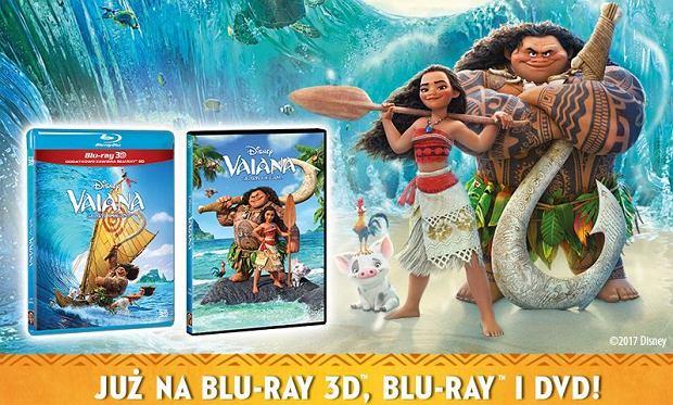 Vaiana: skarb oceanu - premiera na DVD i BluRay