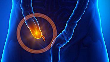 Wyrostek robaczkowy odgrywa ważną rolę w układzie odpornościowym