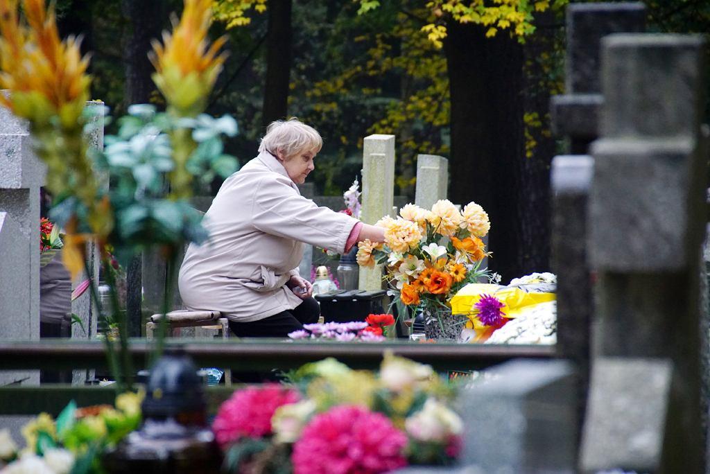 Wszystkich Świętych na zielonogórskim cmentarzu