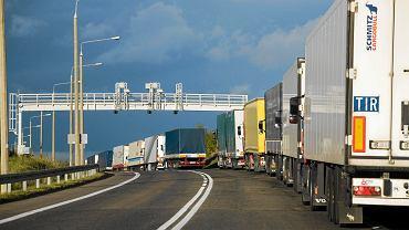 Polskie ciężarówki na przejściu granicznym
