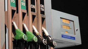 Dystrybutor paliwa na stacji (zdjęcie ilustracyjne)