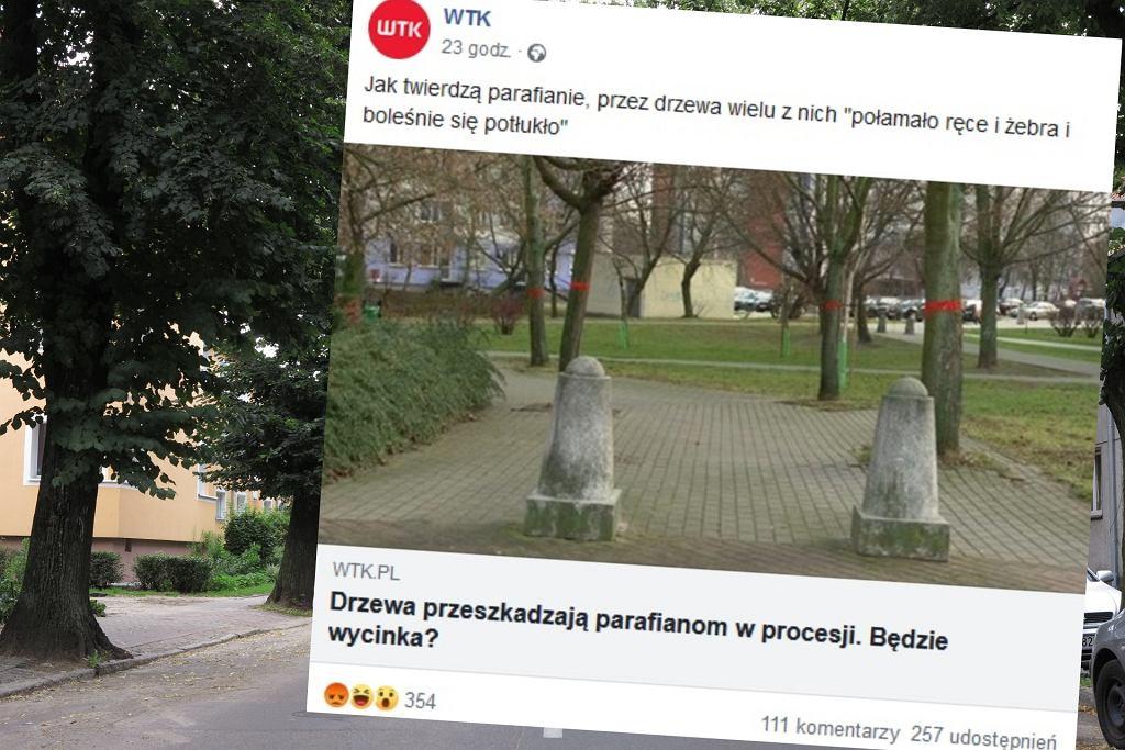 Zdjęcie ilustracyjne, fot. Przemysław Skrzydło/Agencja Gazeta