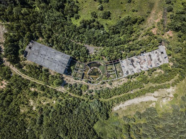 Zdjęcie numer 0 w galerii - Tajemnicza ruina w środku lasu kiedyś miała być luksusowym kurortem.
