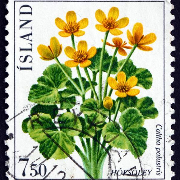 Znaczek pocztowy Islandia