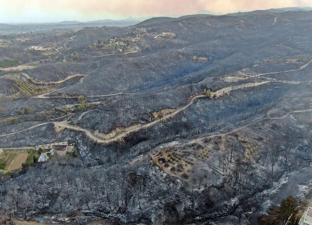 Widok z lotu ptaka na spalone lasy w Manavgat, dzielnicy Antalya