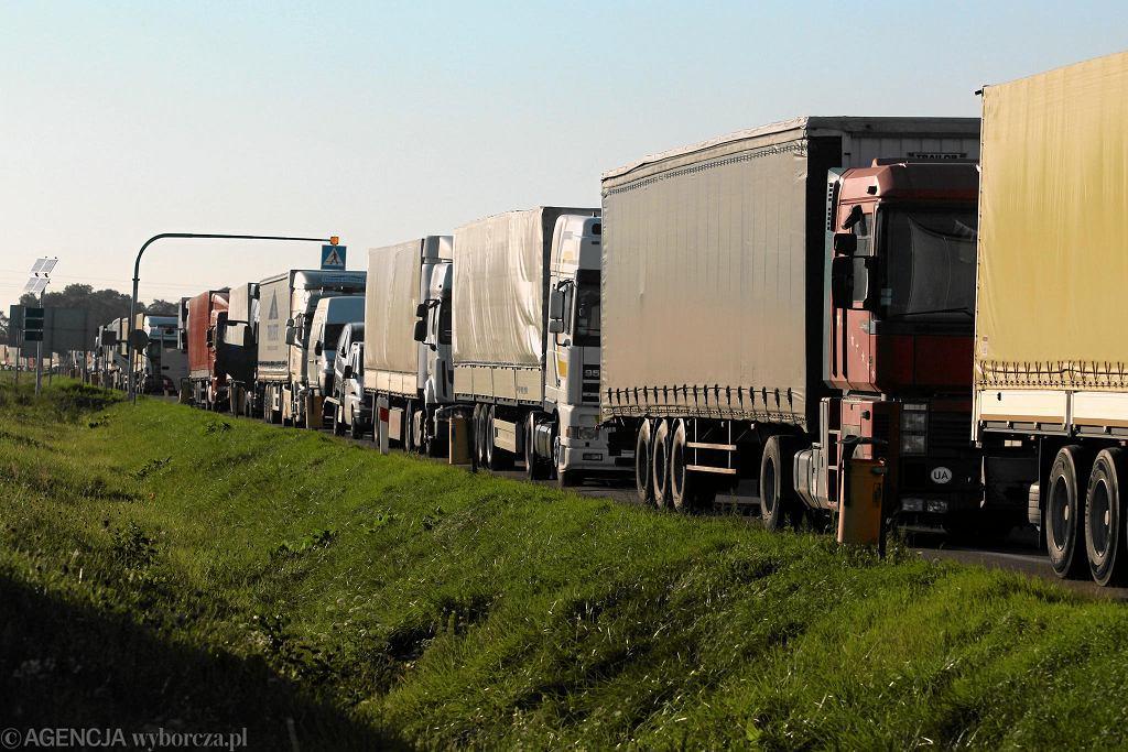 Ciężarówki (zdjęcie ilustracyjne)