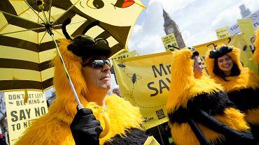 Demonstracja pszczelarzy i ekologów w Londynie