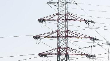 """Wysokie ceny prądu. """"Będą dopłaty"""" - zapowiada minister klimatu. Kto może na nie liczyć?"""