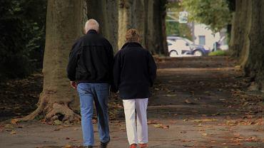 Osoby, które przejdą w roku 2021 na emeryturę mogą liczyć na wyższe emerytury