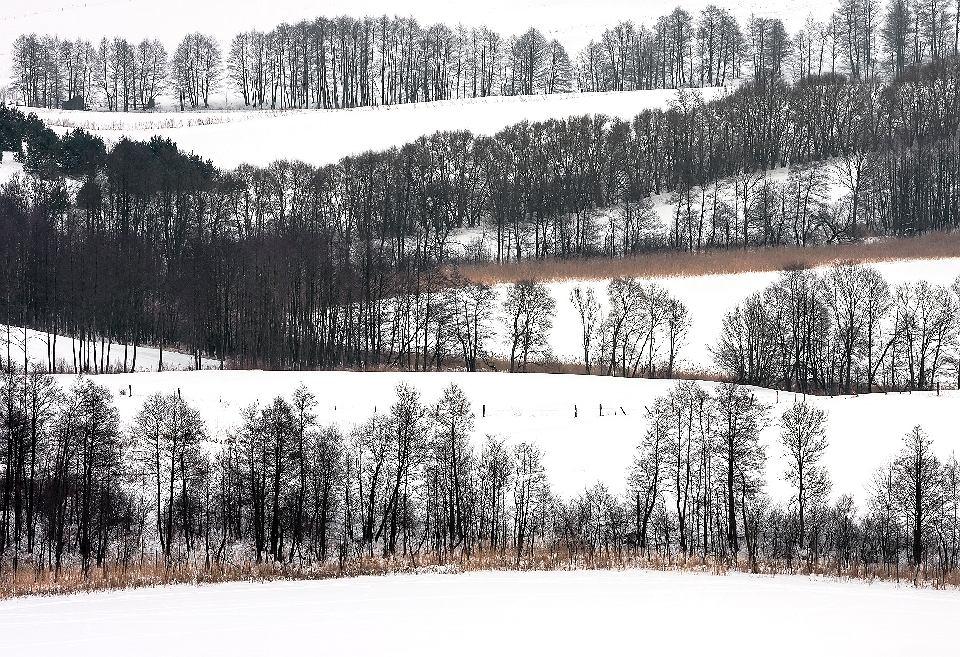 Suwalski Park Krajobrazowy. Krajobraz okolic Szurpił. Zdjęcie, które uzyskało pierwszą nagrodę w kategorii ogólnej konkursu Wiki Lubi Przyrodę w 2015.
