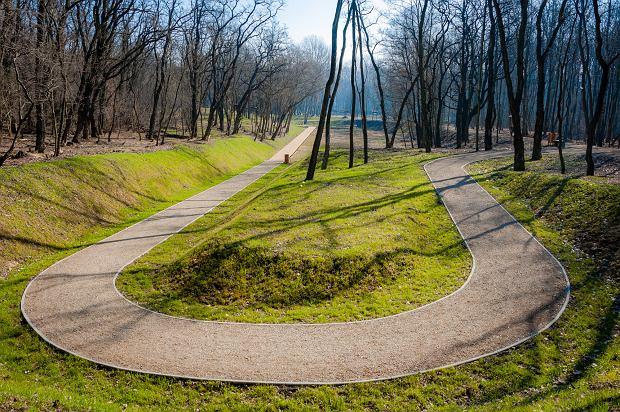 Zdjęcie numer 26 w galerii - Park Tysiąclecia w Sosnowcu w trakcie rewitalizacji.