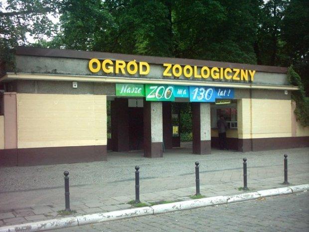 Stare zoo w Poznaniu