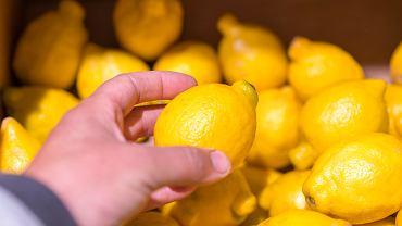 Niedługo po zakupach cytryny spleśniały? Sprawdzamy, jak tego uniknąć
