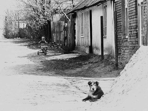 Warszawska wieś Wolica na Ursynowie, lata 90. te