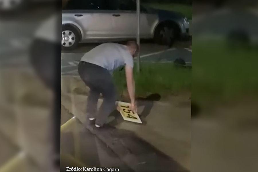 Kierowca pomógł jeżowi przejść przez ulicę