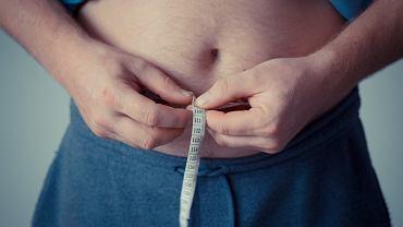Zdaniem naukowców białko BP1 reguluje metabolizm tłuszczów i cukrów w organizmie