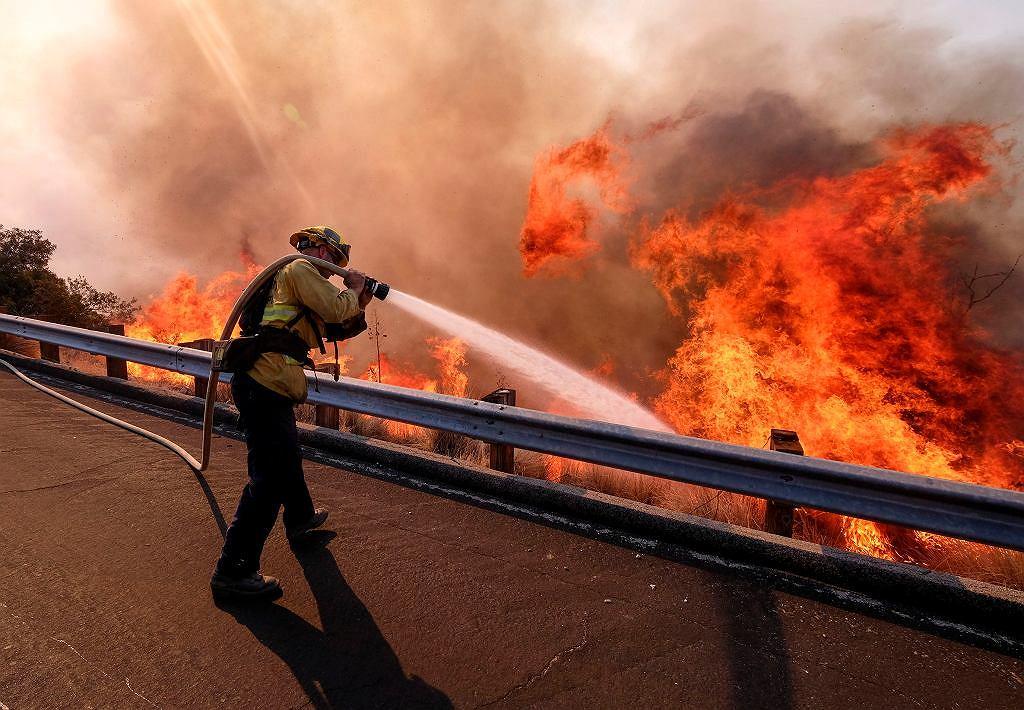 Tragiczny bilans strat po pożarach w Kaliforni. 48 osób nie żyje