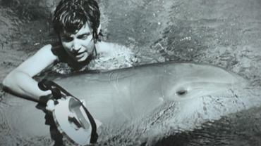 Margaret Howe Lovatt nawiązała niezwykle silną więź z delfinem Peterem