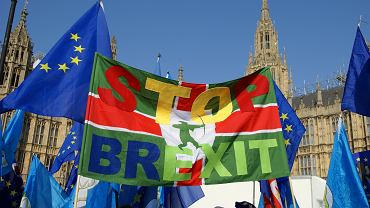 Brexit demonstrators near the Houses of Parliament, London.
