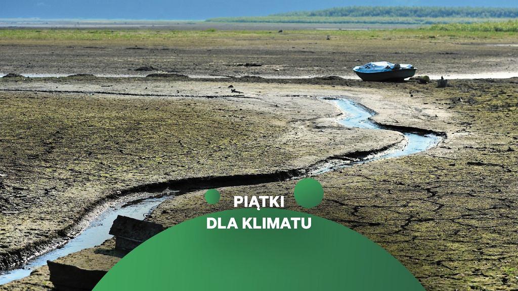 Wysychające w wyniku suszy Jezioro Żywieckie