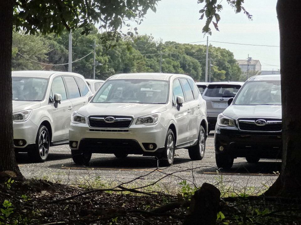 Nowy Subaru Forester