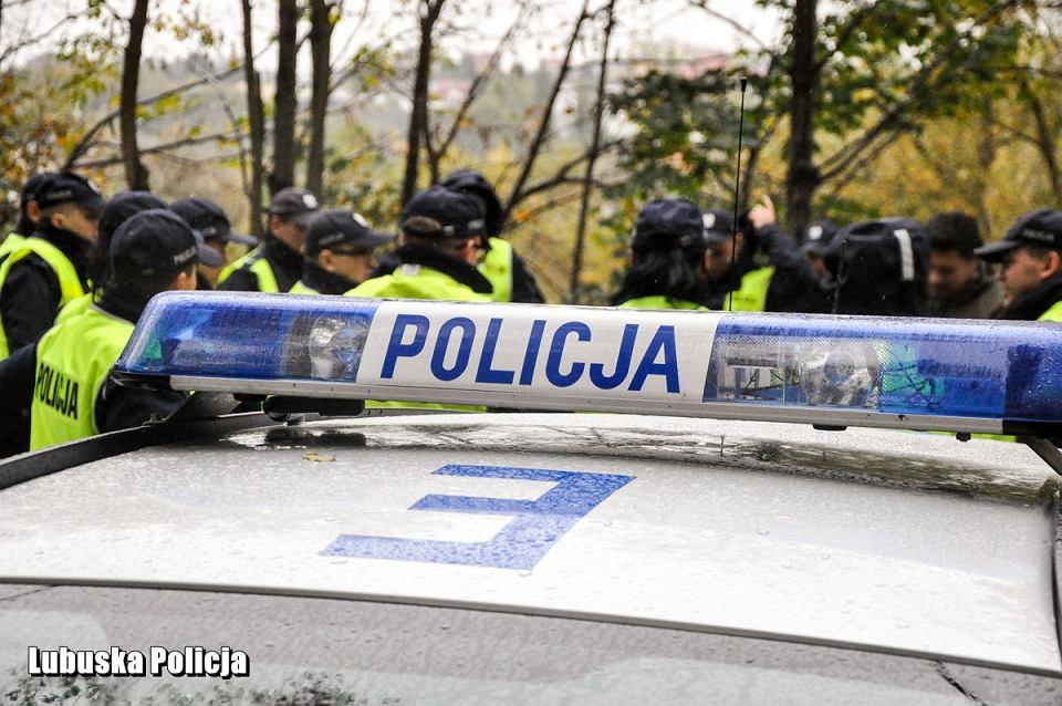 Policja. Akcja poszukiwawcza