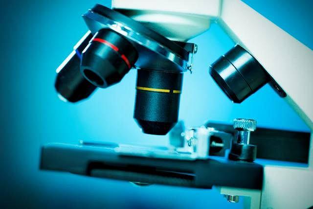 Materiał pobrany do badania histopatologicznego pozwala potwierdzić lub wykluczyć chorobę krwi
