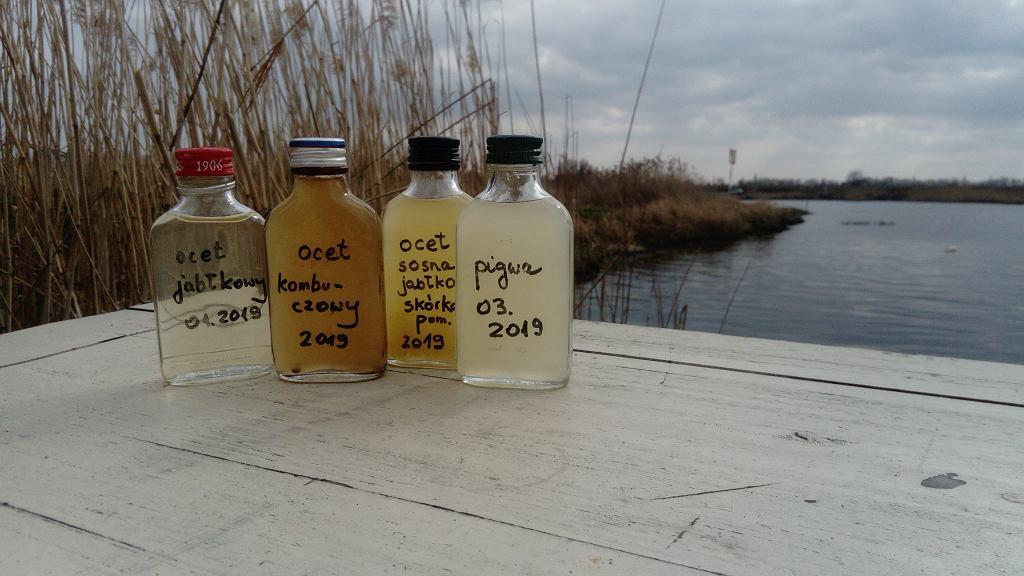 Jak zadbać o środowisko i wykorzystać wyrzucone butelki na własny użytek?