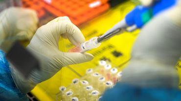 Koronawirus w Chinach. Praconwik laboratorium w Huoyan wykonuje test na obecność koronawirusa