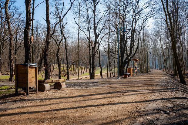 Zdjęcie numer 25 w galerii - Park Tysiąclecia w Sosnowcu w trakcie rewitalizacji.