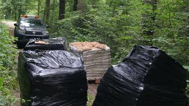 Nieznana osoba podrzuciła do lasu kilkaset tysięcy zepsutych jaj